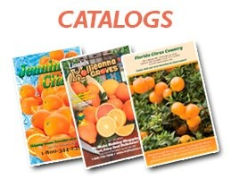 mmpcfl-citrus-industrys-catalogs