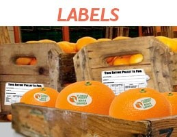 mmpcfl-citrus-industry-orange-labels