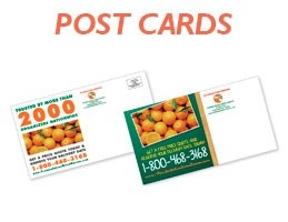 mmpcfl-citrus-industry-postcards