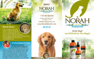 Norah Trifold | Branding and Printing Services | MMP Longwood