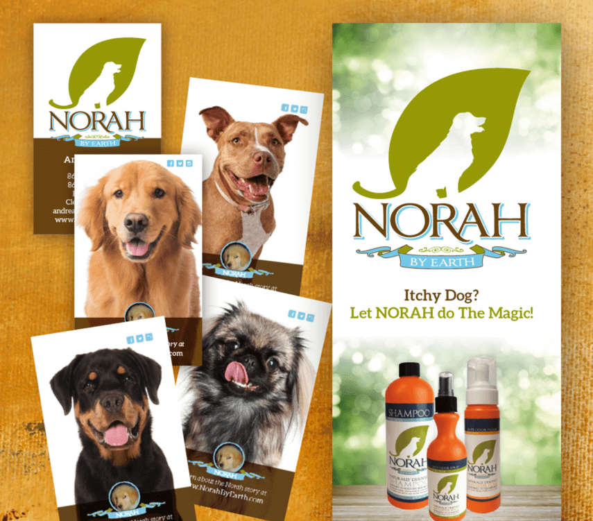 Norah | Branding Packages | MMP Longwood