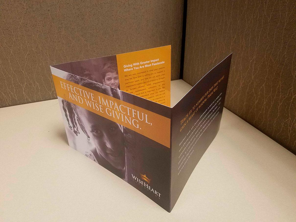 """27"""" Trifold Brochure   MMP Longwood"""